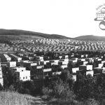 Obytné čtvrti na východním okraji Zlína, 1938