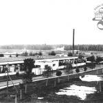 Baťova továrna Chelmek, Polsko